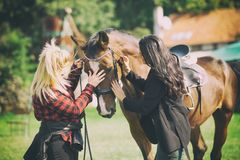 adorable horse cuddle with two women, friendship between animal and people stock photos