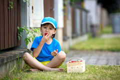 Sweet adorable little child, boy eating strawberries, summertime Royalty Free Stock Photography