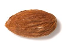 Sweet almond drupe. Isolated on a white background Royalty Free Stock Image