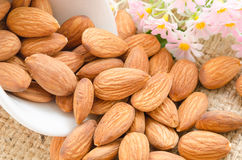 Sweet almonds with flower Stock Image