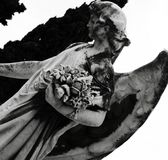 Sweet angel holding some flowers part 2. Shot in black and white detail of the sculpture on the facade of this historic building cemetery representing some Royalty Free Stock Images