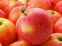 Sweet apple. Royalty Free Stock Images