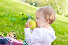 Sweet apple Stock Images