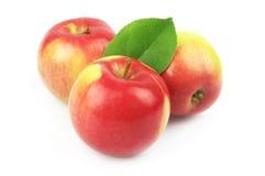 Sweet apples stock photo