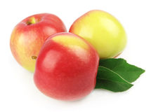 Sweet apples royalty free stock image