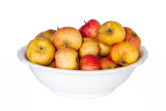 Sweet apples in a white bowl Royalty Free Stock Photos
