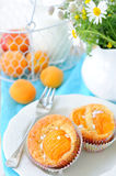 Sweet apricot muffins in сupcakes royalty free stock photography