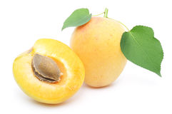 Sweet apricots fruits Royalty Free Stock Photo