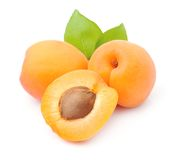 Sweet apricots fruits Stock Images