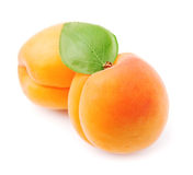 Sweet apricots fruits Royalty Free Stock Photography