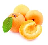 Sweet apricots with leafs Stock Photography