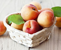 Sweet Apricots Royalty Free Stock Image