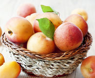 Sweet Apricots Stock Photo