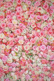 Sweet artificial roses background Stock Photo