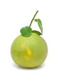 Sweet Asia Grapefruit Stock Photos