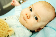 Sweet Baby. A sweet five months old baby boy with a soft toy Royalty Free Stock Image