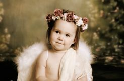 Sweet baby angel. Elegant vintage style portrait of a baby girl dressed with angel wings and a flower halo headband Stock Images