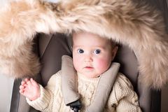 Sweet baby with big eyes sitting in luxury fur stroller Royalty Free Stock Image