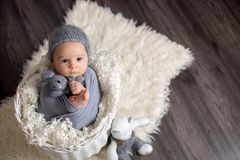 Sweet baby boy in basket, holding and hugging teddy bear, looking curiously at camera. Smiling royalty free stock photo