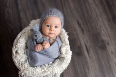 Sweet baby boy in basket, holding and hugging teddy bear, looking curiously at camera. Smiling stock photography