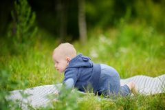 Sweet baby boy at the park Stock Photography