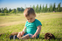 Sweet baby boy sitting in a autumn park stock images