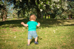 Sweet baby boy sitting in a autumn park royalty free stock photo