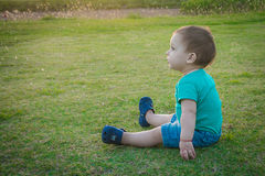 Sweet baby boy sitting in a autumn park royalty free stock image