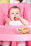 Sweet baby eating biscuit Stock Image