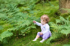 Sweet baby girl gathering wild raspberries in forest Royalty Free Stock Photos