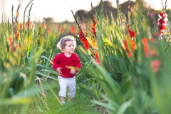 Sweet baby girl in gladiolus field at sunset Royalty Free Stock Photo
