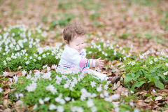 Sweet baby girl playing with first spring flowers Royalty Free Stock Photos
