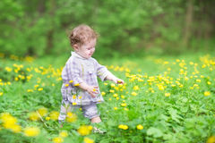 Sweet baby girl playing with yellow flowers Royalty Free Stock Photos