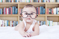 Sweet baby with glasses and a bookcase background Stock Photography