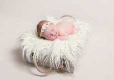 Sweet baby in hairband napping Stock Photos