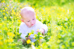 Sweet baby n a blooming garden Royalty Free Stock Image
