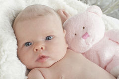 Sweet baby with pink teddy bear. Closeup head and shoulders portrait of a contented beautiful bright-eyed new baby with light pink teddy bear. White fake fur royalty free stock photos