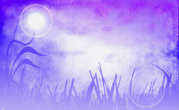 Sweet background Stock Image