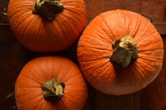 Sweet baking pumpkins on vintage leather suitcase Stock Image