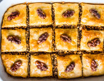 Sweet baklava with honey and nuts, rustic, traditional Turkish d Stock Photos
