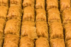 Delicious baklawa tray - pastry shop. Sweet baklawas on tray. its traditional turkish dessert Royalty Free Stock Photography