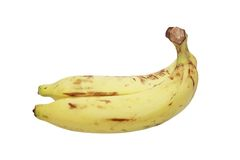 Sweet bananas in white background Royalty Free Stock Photo