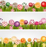 Sweet banner with pine tree, lollipop and orange slice Stock Images