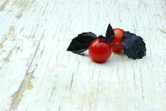 Sweet basil leaves with cherry tomatoes. On a grungy table Stock Image