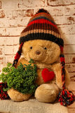 Sweet  bear with a heart and a cap Stock Photo