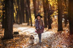 Sweet beautiful girl in hat walking with a dog in the autumn park royalty free stock photo