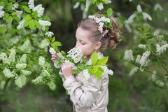 Sweet beautiful girl sniffing a bird cherry branch in a blooming garden royalty free stock image