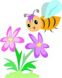 Sweet Bee and Flower Stock Photos