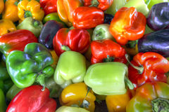 Sweet Bell Peppers Assorted Colors Stock Photos