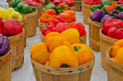 Sweet Bell Peppers in baskets Stock Images
